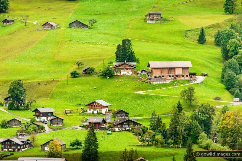 Grindelwald Grund