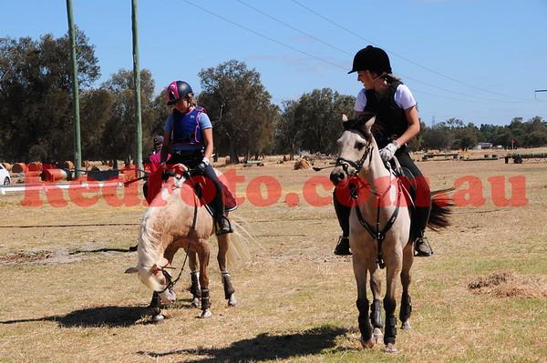 2017 01 22 Oakford Dressage and ShowJumping Day Around the Grounds