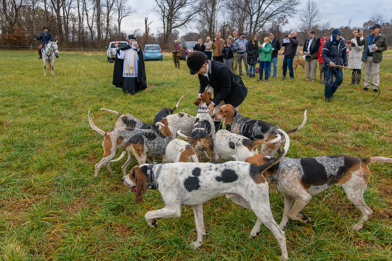 11.27.2019 Blessing of the Hounds