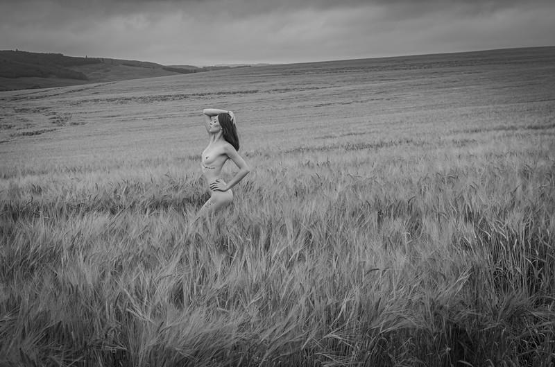 Karisa - Wheat Fields-6141.jpg