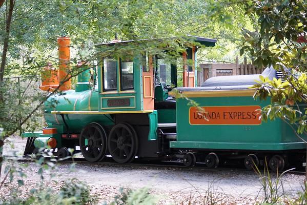 jacksonville zoo 6915