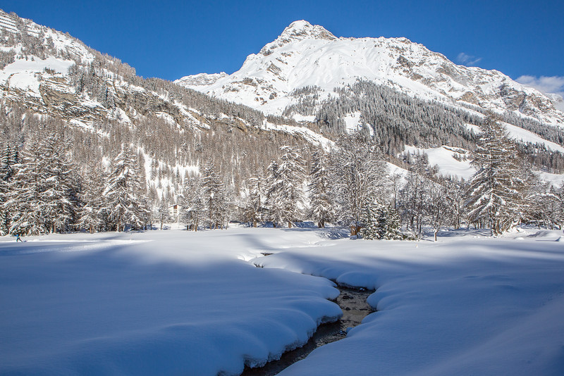 Rheinwald-Winter-D-Aebli-064.jpg