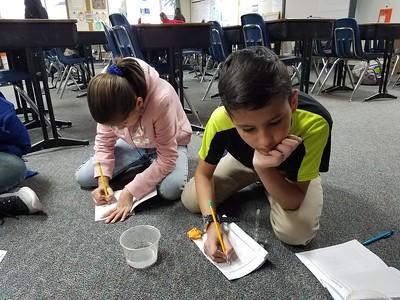 Pasadena Avenue Elementary | November 14, 2018 | 5th Grade