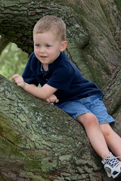 Aaron in tree_edited-1.jpg
