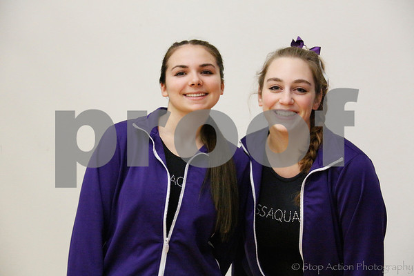 2015-01-08 Issaquah High School Gymnastics mugshots