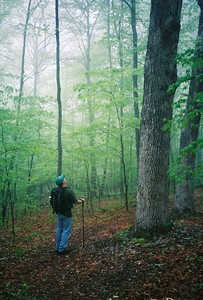 2005 MT. TOM TRAIL at THE PRATT CENTER