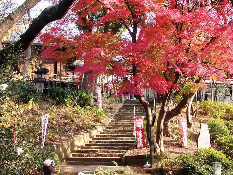 Tokyo (7).JPG