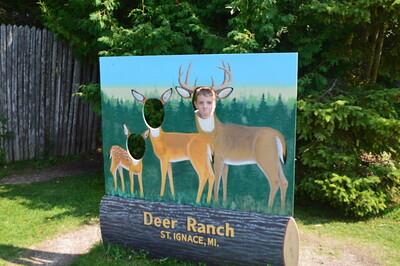 St. Ignace Deer Ranch