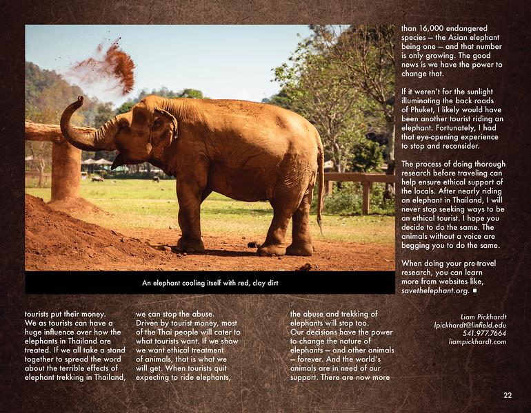 elephant magazine final_WEB12.jpg