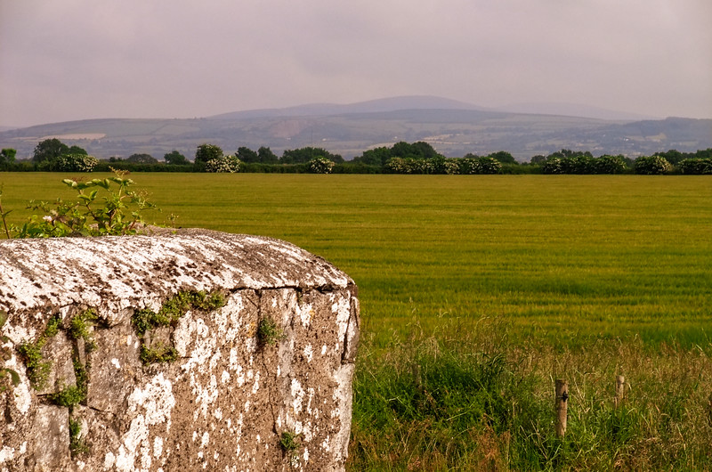 Towards the Wicklow Mountains from Gollierstown Bridge