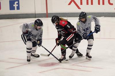 Northeastern Women's Ice Hockey