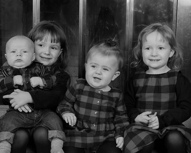 Audrey Family Christmas 2017