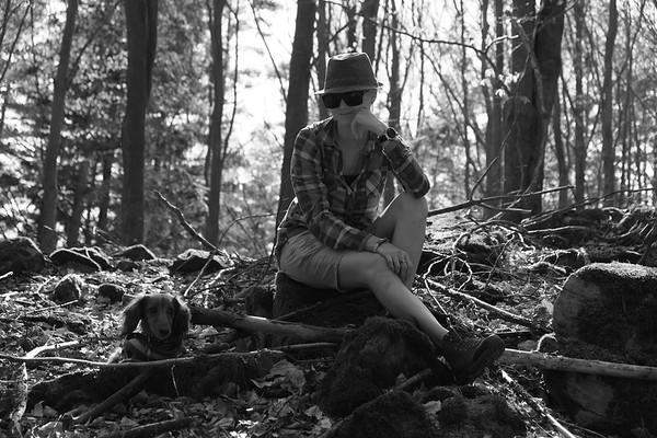 Do lesa