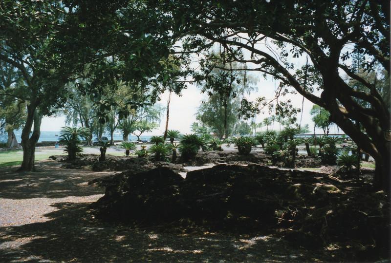 199806-hawaii-10228.jpg