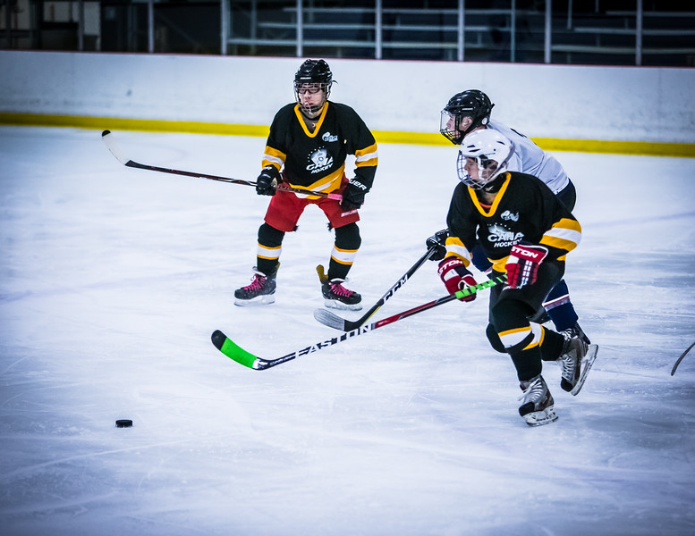 Bruins2-77.jpg