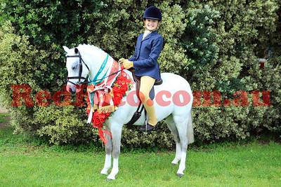 EWA 40th Anniversary Show Horse of the Year