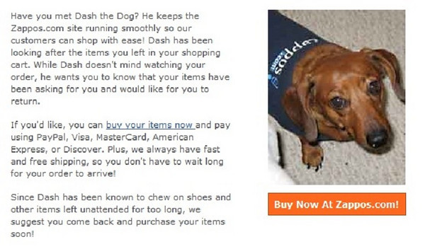 Zappos, a letter from Dash the dog