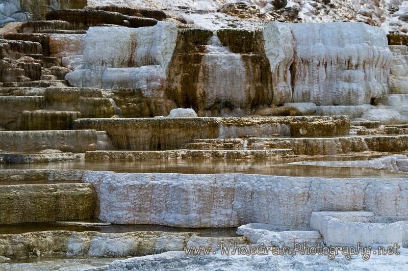 20100713_Yellowstone_2829_1.jpg