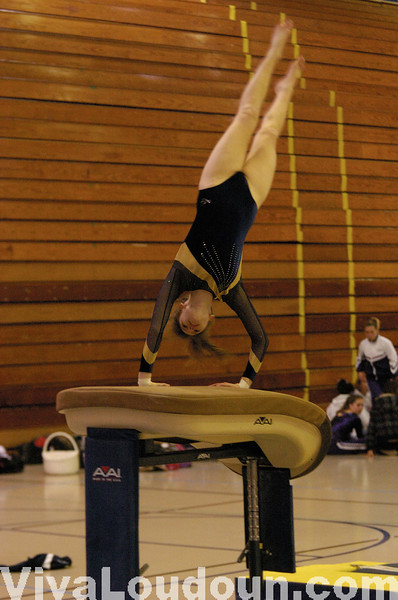 Robinson Gymnastics Meet (by Craig Sterbutzel)