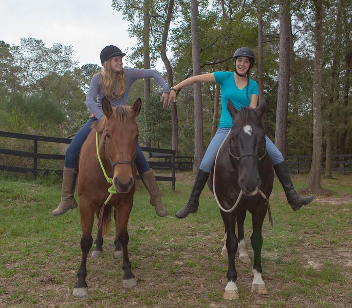 horses & staff-314.jpg