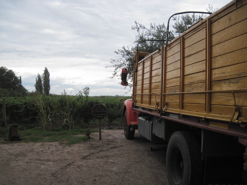 Truck for Grapes