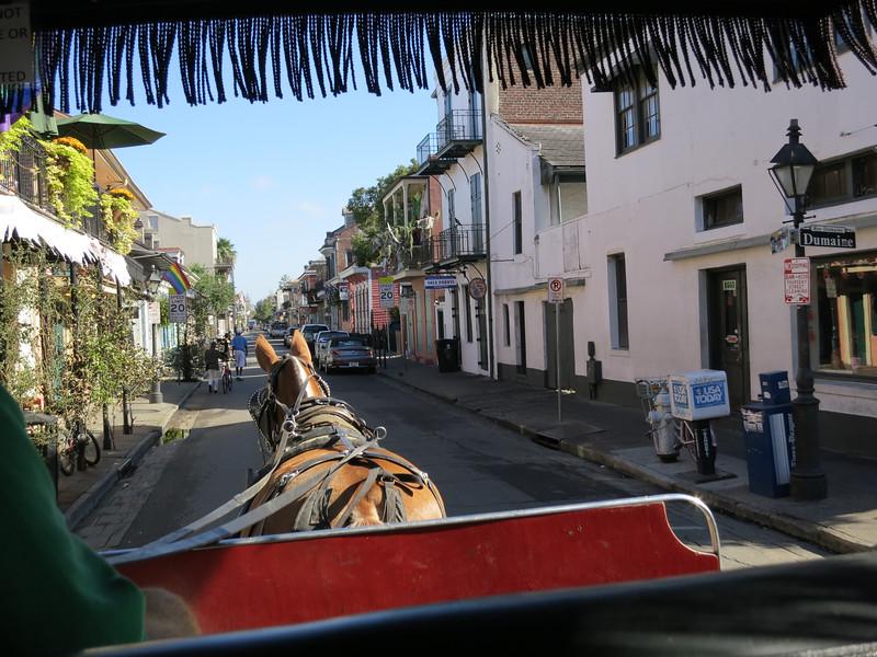 2012-10 New OrleansIMG_1893 - 2012-10-24 at 10-21-53-18.jpg