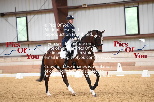 PVDA Spring Dressage Show May 2017