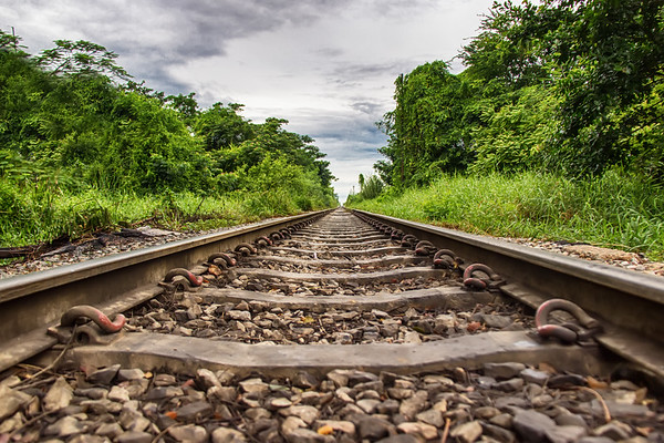 20150915dw_tracks006 copy.jpg