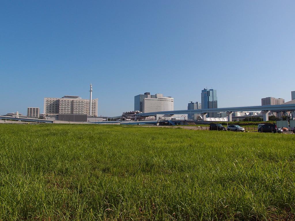 A green field in Ariake.