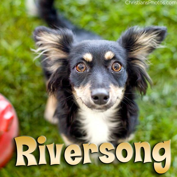 Riversong.jpg