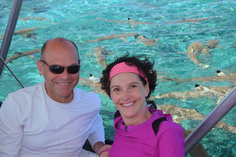 Shark feeding time! - Raanui Snorkel Trip - Bora Bora