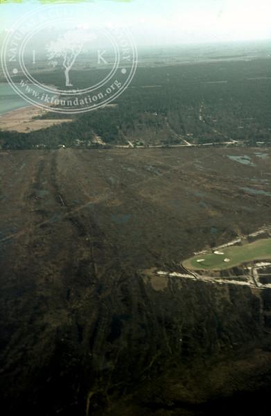 Skanör ljung | EE.1989