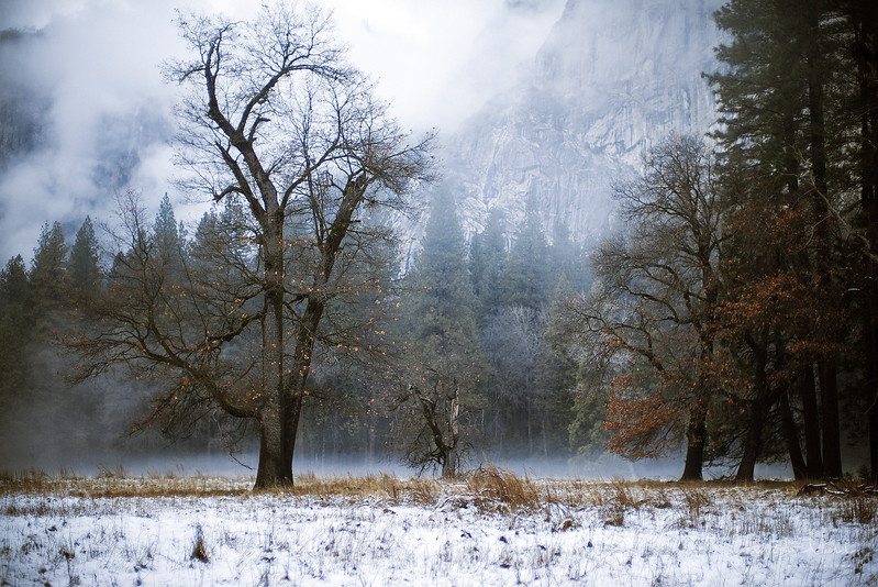20141213_Yosemite_3040.jpg