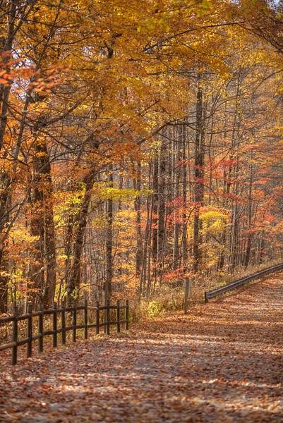 North Carolina in the fall - 2016.