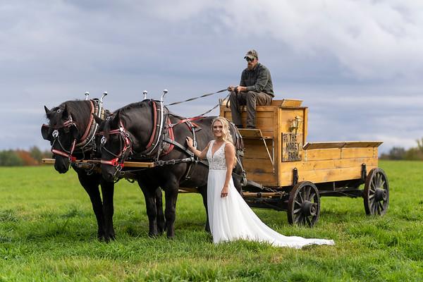Lauren with the Horses