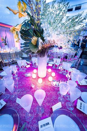 2019 Alvin Ailey DC Gala