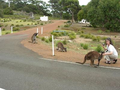 Snug Cove Kangaroo Island