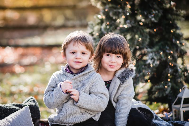 2019-11-16   Burke Holiday Mini
