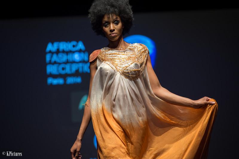 Africa Fashion Reception Paris (2014)
