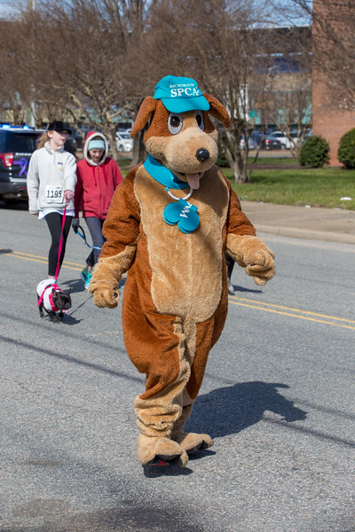 Richmond Spca Dog Jog 2018-791.jpg