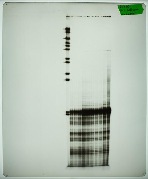 CWG-07-011 Diagnostic Film