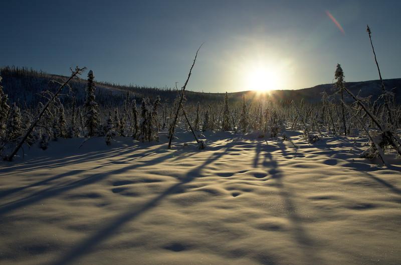 Sun on the Hills