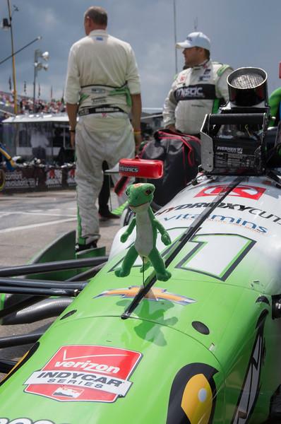 Chevrolet Detroit Belle Isle Grand Prix - 05.20.2015 - _CAI1653.jpg