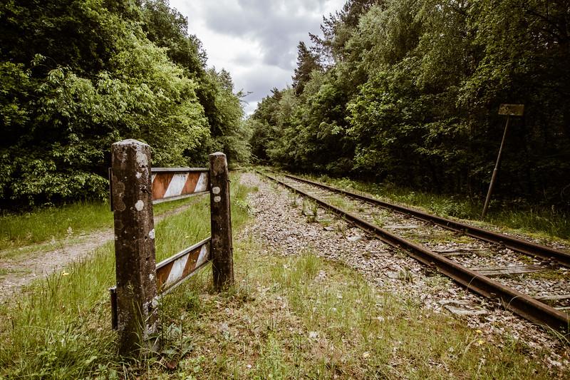 Wandeling in Natuurgebied De Mijnweg_17062012 (2 van 7).jpg