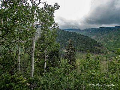 Pecos Wilderness  New Mexico