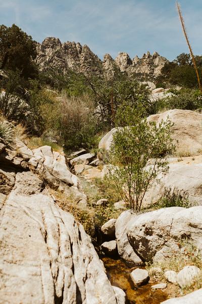 Aguirre Springs RR-8985.jpg