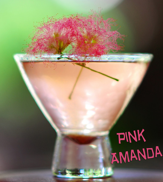 "Photograph of ""Pink Amanda Martini"" made with iS Vodka especially for Amanda Lepore. A ""Pink Amanda Martini"" is made with iS Vodka, Sprite, Fresh Limejuice, and a Dash of Organic Berry Juice for color. Garnish with a fresh sprig of Mimosa.