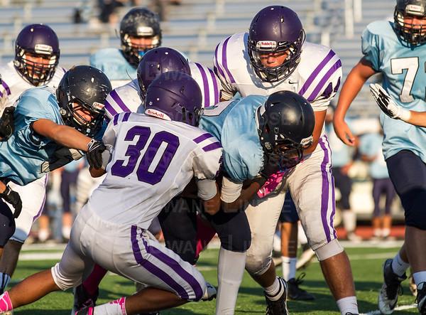Sophomore - Rolling Meadows vs Prospect - 10-11-13