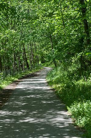 Patapsco State Park, around the Grist Mill Trail