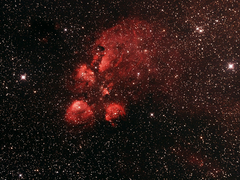 NGC6334 - Gum 62/63/64 - Cat's Paw or Bear Claw Nebula in Scorpius - 27/6/2014 (Processed cropped stack)